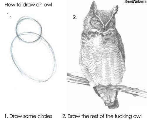 how_to_draw_an_owl.jpg.270f2ed63211c3c039f7f6eb846f4865.jpg